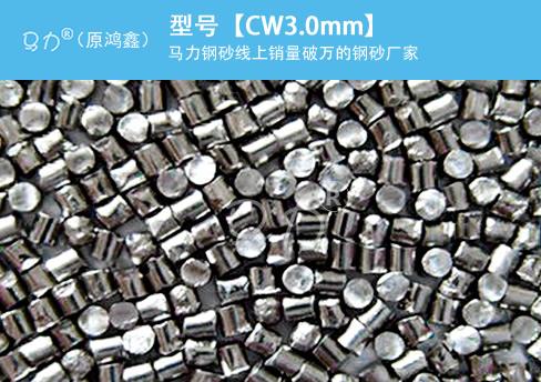 高碳钢丝切丸CW3.0mm图片型号